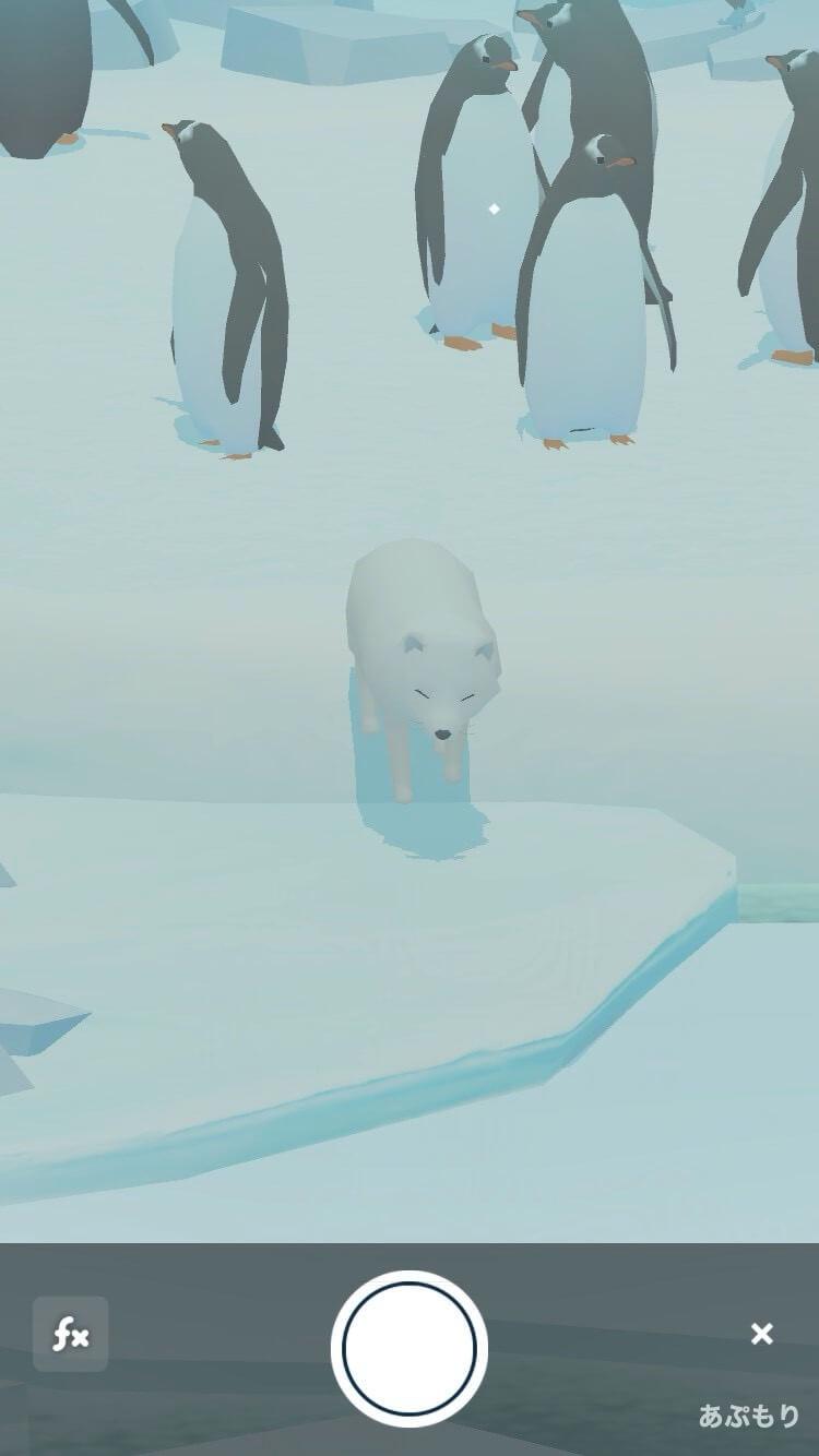 ペンギンの島 キツネ