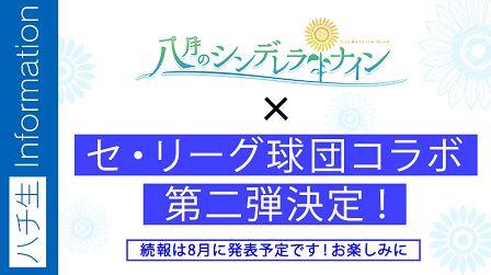 「ハチナイ」×「セ・リーグ球団」コラボ決定